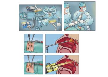 Illustration für Lehrbuch